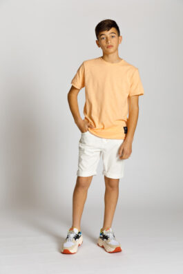 חולצה T שרוול קצר
